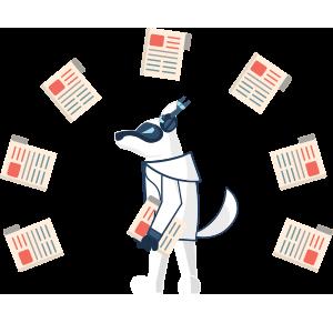 Публикации в СМИ - Цифровой Волк