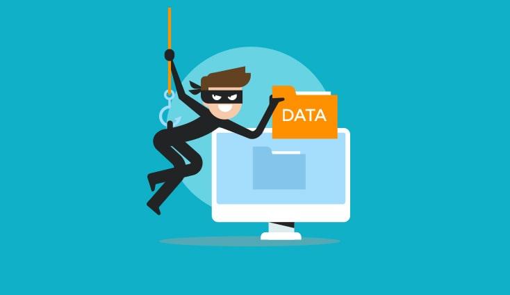 Защита доменного имени сайта - Цифровой Волк